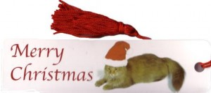 Merry Christmas & Happy New Year from Untie the Knots Massage & Natural Therapies